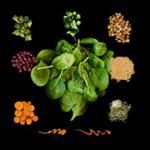 Sweetgreen Spicy Sabzi Salad with Bread